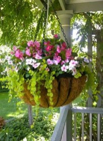 Lovely Hanging Flower To Beautify Your Small Garden In Summer 05