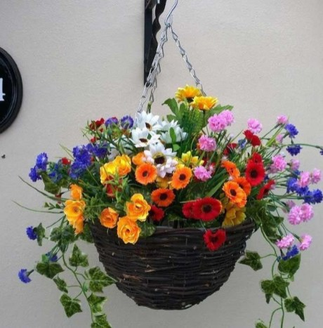 Lovely Hanging Flower To Beautify Your Small Garden In Summer 08
