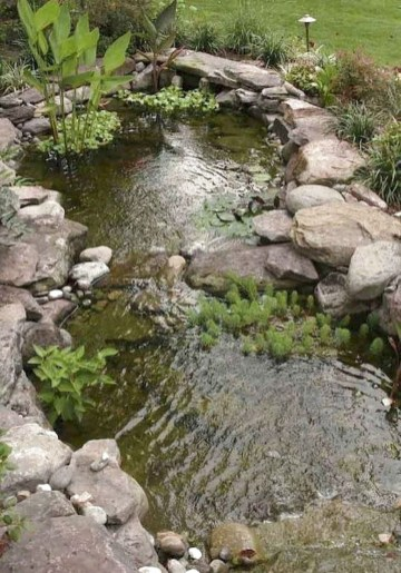 Adorable Fish Ponds Inspirations For Your Home 05