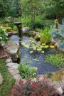 Adorable Fish Ponds Inspirations For Your Home 30