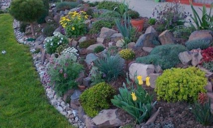 Elegant Indoor Rock Garden Ideas That Can Enhance Your Home Style 10