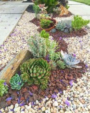 Elegant Indoor Rock Garden Ideas That Can Enhance Your Home Style 28