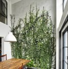 Incredible Indoor Wall Garden Ideas For More Home Fresh 09