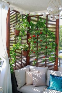 Small Balcony Ideas For A Relaxing Place Get Rid Of Saturation 23