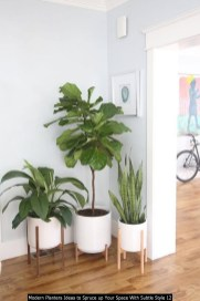 Modern Planters Ideas To Spruce Up Your Space With Subtle Style 12