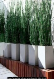 Modern Planters Ideas To Spruce Up Your Space With Subtle Style 26