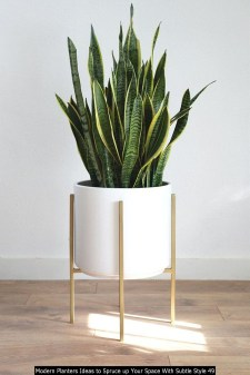 Modern Planters Ideas To Spruce Up Your Space With Subtle Style 49