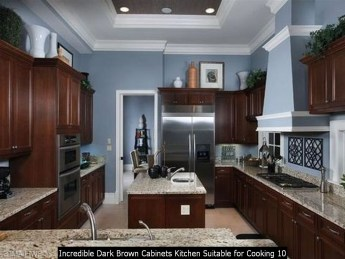 Incredible Dark Brown Cabinets Kitchen Suitable For Cooking 10