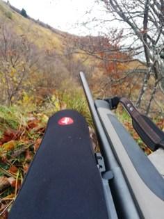 Najboljši kalibri in krogle za lov na daljše razdalje (1)
