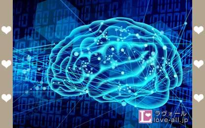 脳 イメージ図