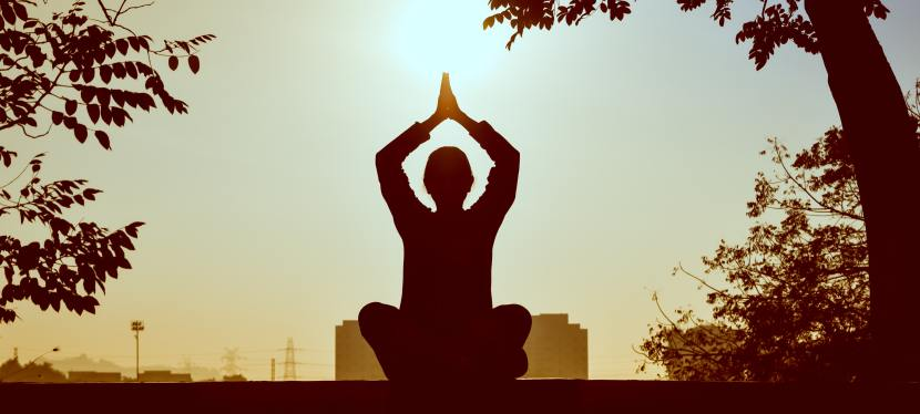 Learning to Meditate in Grad School. A Guide for Beginners