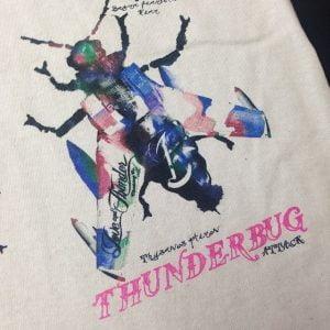thunderbug-close-up-mp