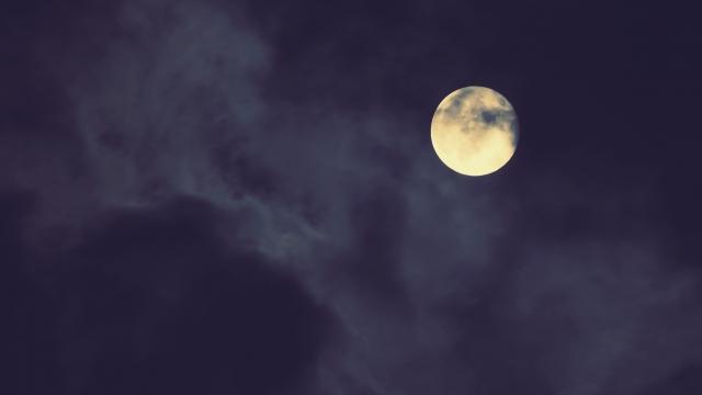 恋降る月夜に君想ふ