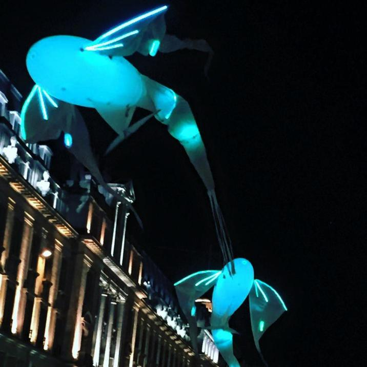 flying fish lumiere london