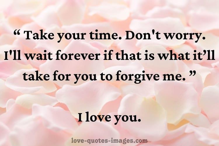 im sorry quotes
