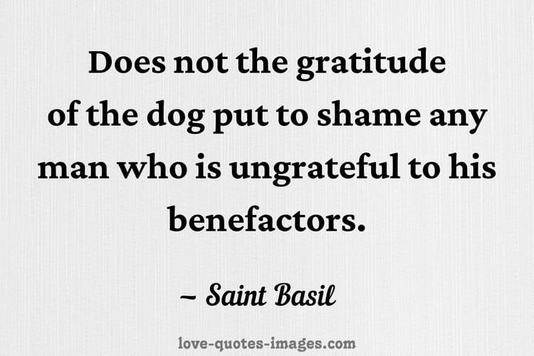 ungrateful people quotes