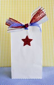 Fourth Of July Favor Bags by Love The Day