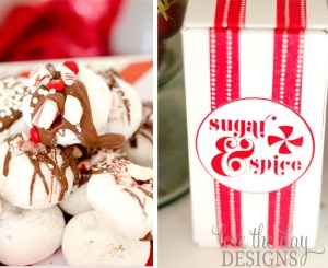 Peppermint Printable Party by Love The Day