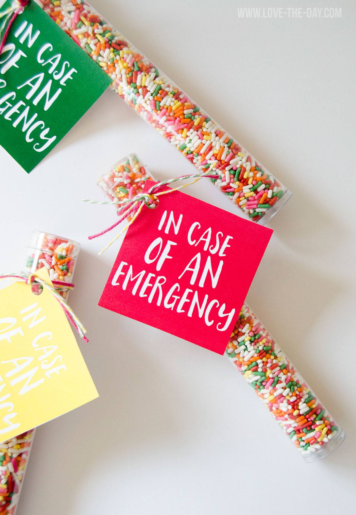 In Case Of An Emergency Free Printable By Love The Day