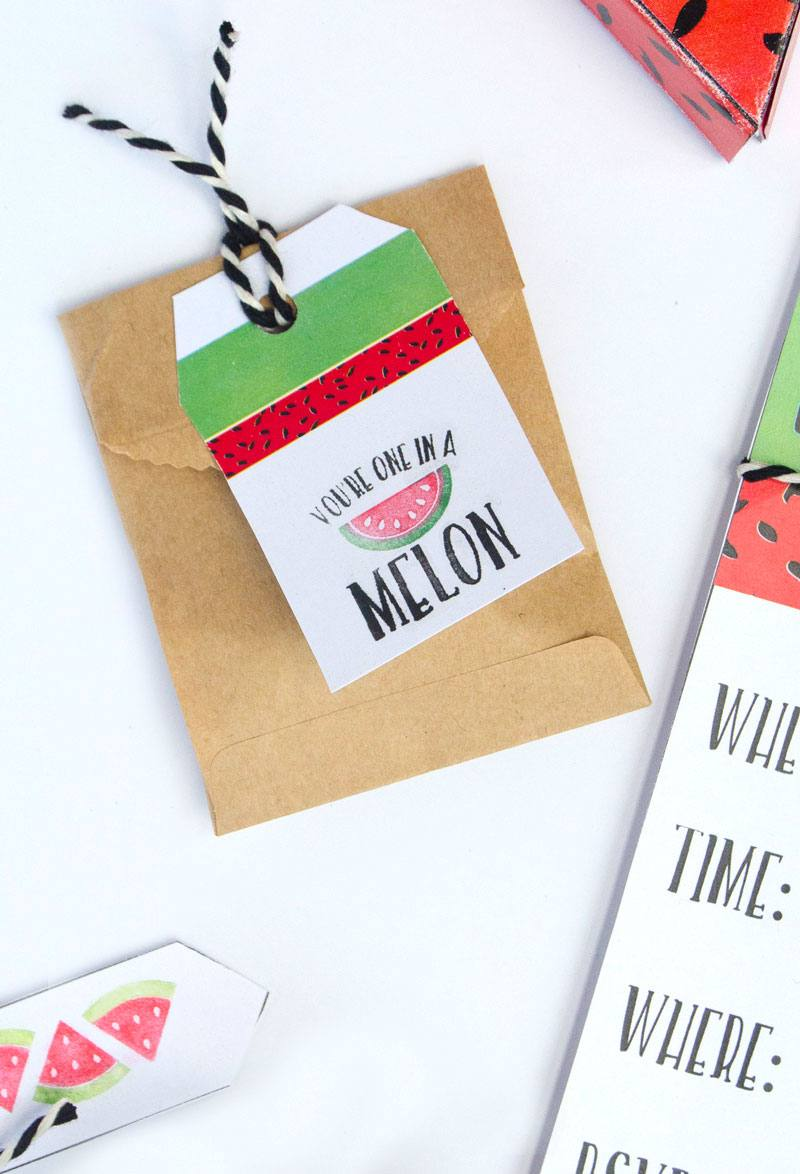 Let's Party! Watermelon Ideas with the Silhouette Mint by Lindi Haws of Love The Day