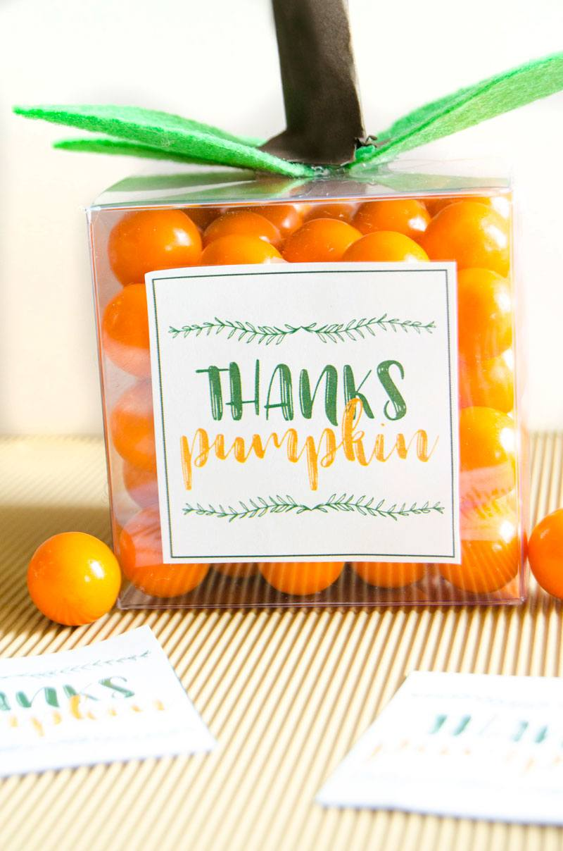 DIY Pumpkin Party Favor by Lindi Haws of Love The Day
