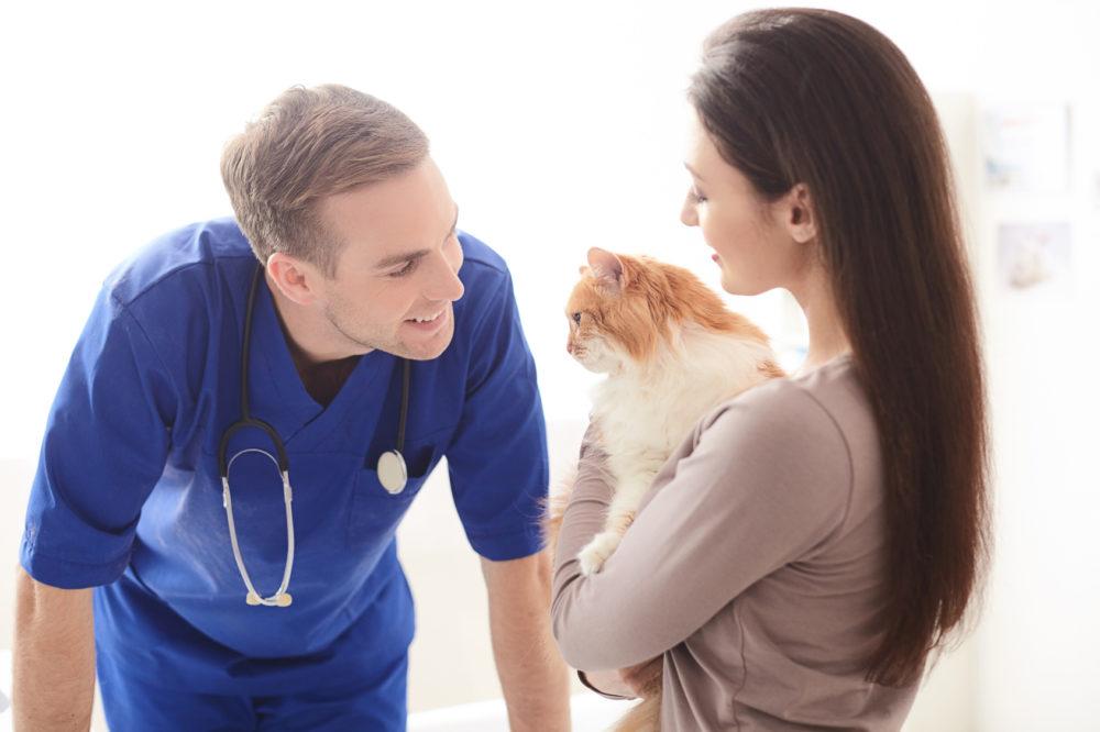 獣医の男性