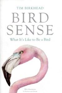 BirdSense