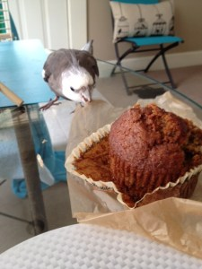 Excellent. Muffin part's all yours, Mom.