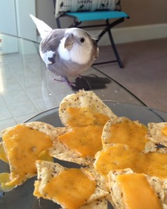 Aha! I figured it out! It's that cheesy stuff...with those crunchy things!