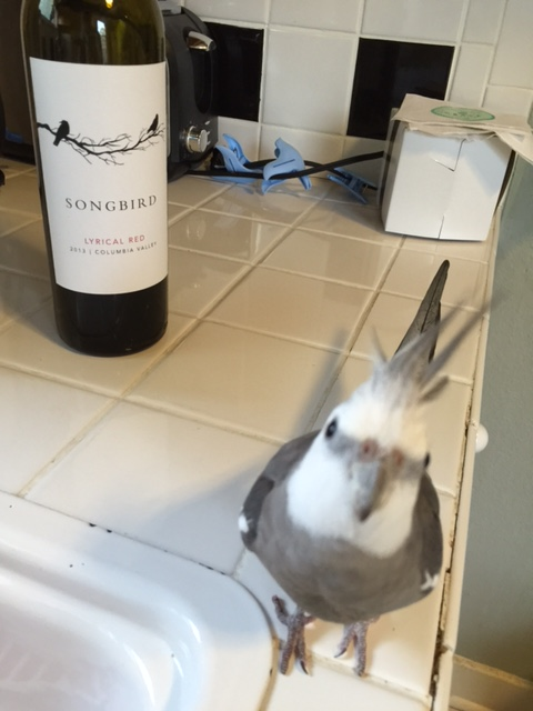 """But to best sell the product, I would recommend the spokesbird be placed """"front and center"""" in all the promo materials."""