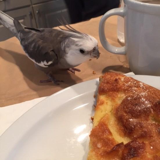 "A ""Dutch Pancake,"" Grandma? For me?"