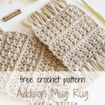 The Addison Mug Rug Crochet Pattern Love Stitch