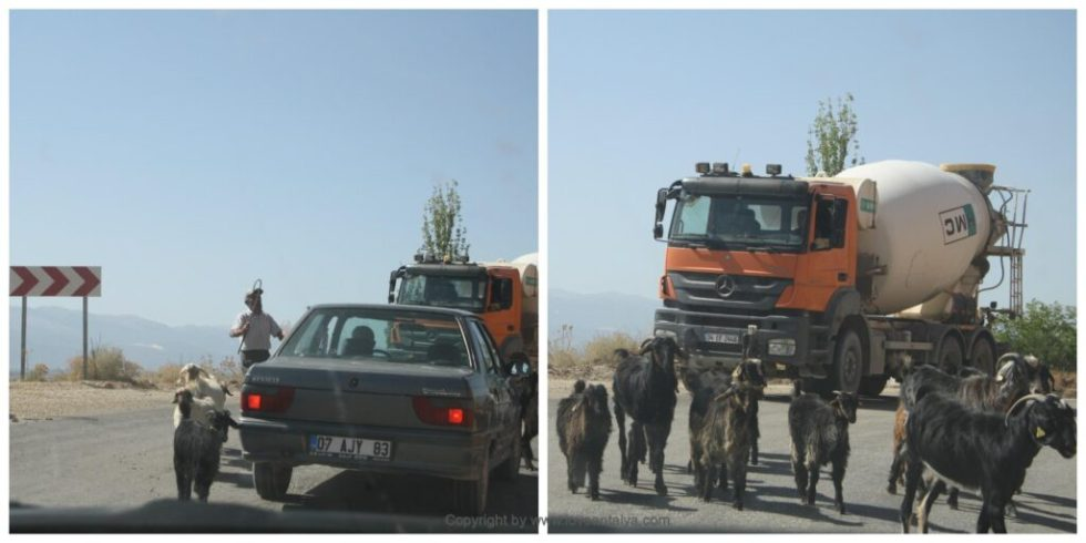 Roadtrip i Tyrkiet