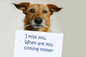 Please come home.