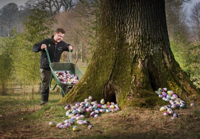 National Trust gets ready for  Easter Egg Trails Please credit photography to Steven Haywood.