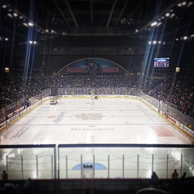 Belfast Giants home crowd