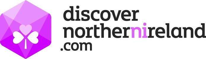 Discoverni logo (1)