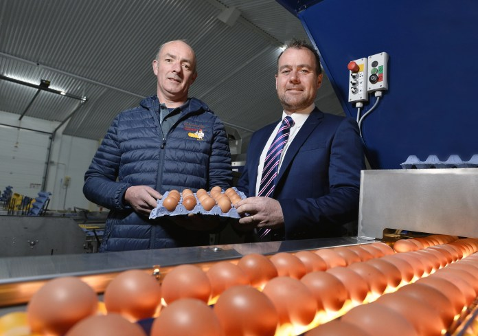 Glenballyeamon Eggs