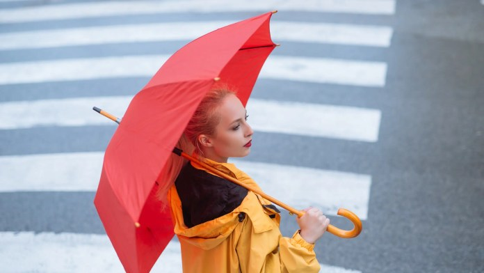 What to Do During Rainy Days in Belfast