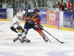 BELFAST GIANTS COME UP SHORT ON THE ROAD AGAINST DUNDEE STARS IN FIRST CUP DEFEAT