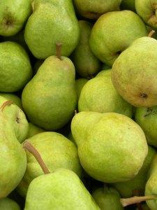 organic_bartlett_pears