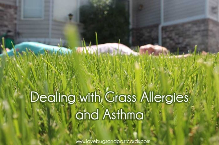 Dealing with grass allergies and asthma in Children