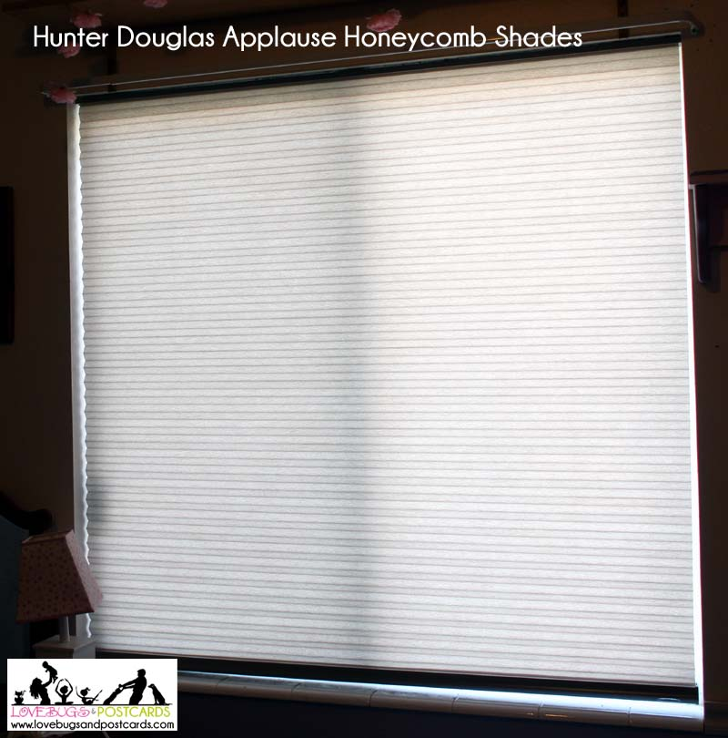 Hunter douglas applause honeycomb shades review lovebugs and postcards solutioingenieria Images