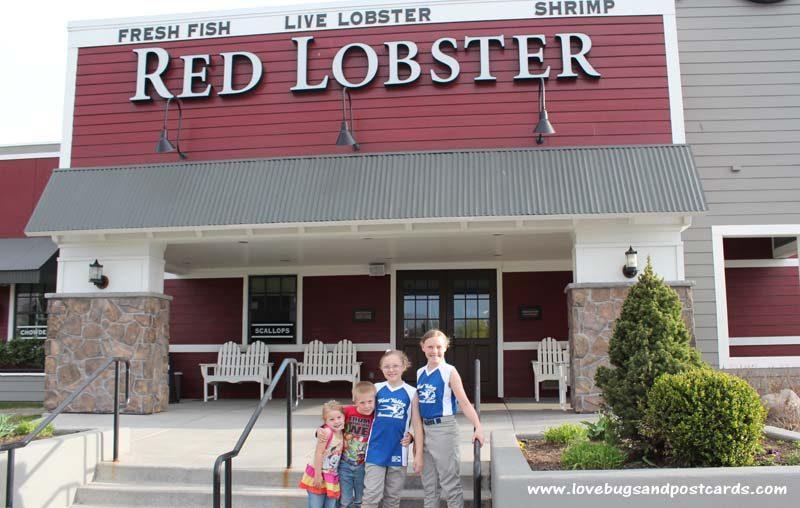 Red Lobster dinner celebrating a team win #lobsterworthy