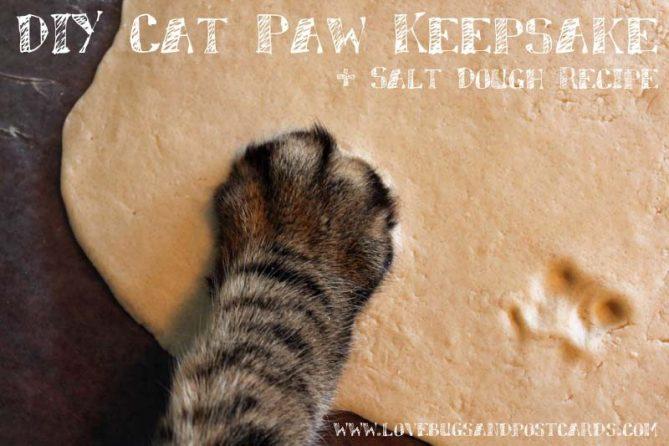 DIY Cat Paw Keepsake + Salt Dough Recipe