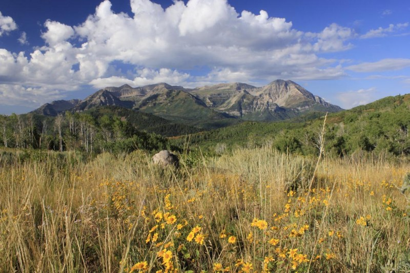15 things to do in Heber Valley {year-round}