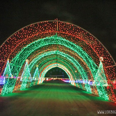 Christmas in Color in Kearns and Provo, Utah