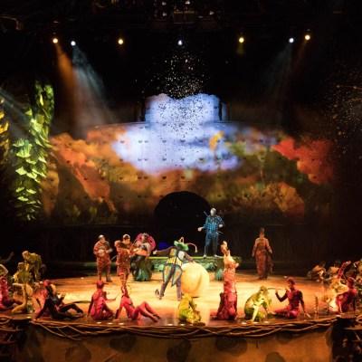 Cirque du Soliel's OVO Review