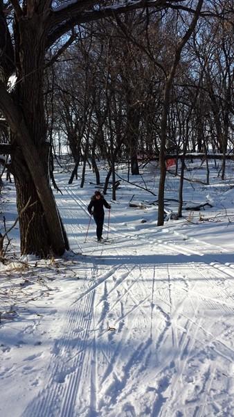 Как мы осваивали лыжи (3)