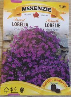 lobelia (2)